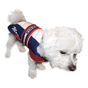 Slovakia clothes for dogs
